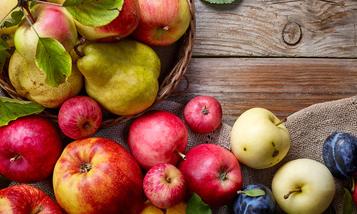 Moštování ovoce